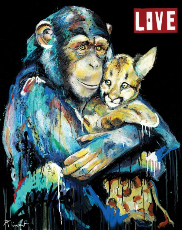 Singe Love Vincent Richeux